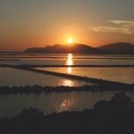 Ibiza saca músculo natural en la 'Birdfair'