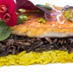 Fotografía editorial para 'El arroz, un plato universal'