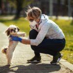 Plantean pruebas PCR para detectar transmisión de Covid-19 de perros a humanos